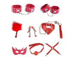 Бондажный набор Taboo Accessories Extreme Set №15